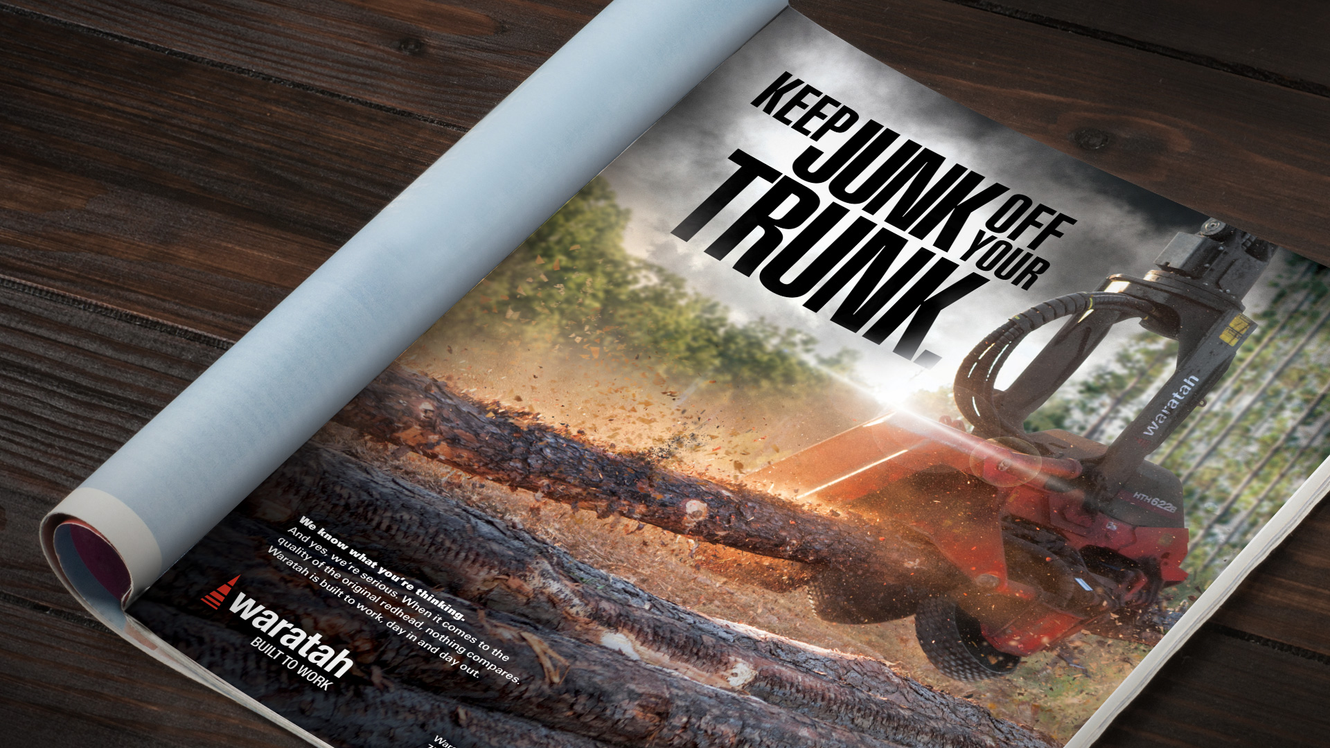 "Print ad saying ""Keep junk out of your trunk"""