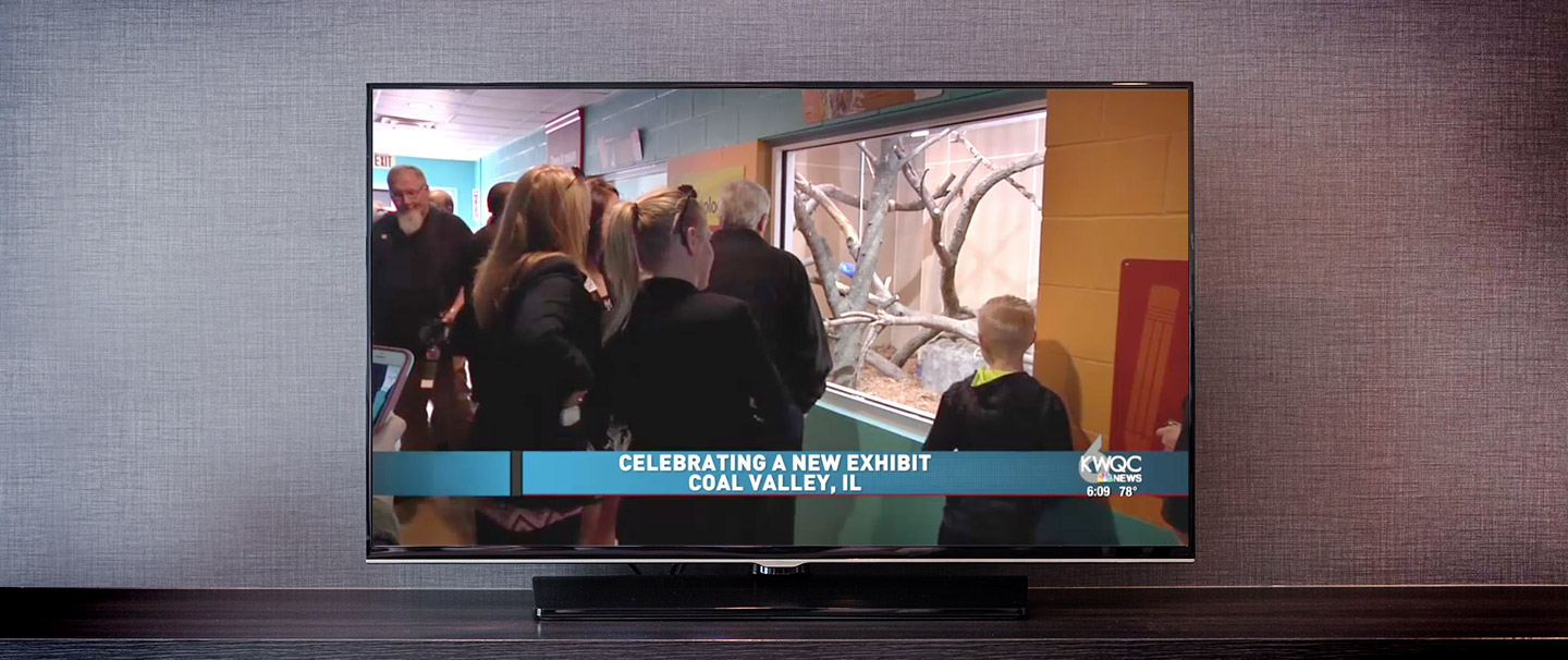 television showing ribbon cutting for new primate exhibit at Niabi Zoo