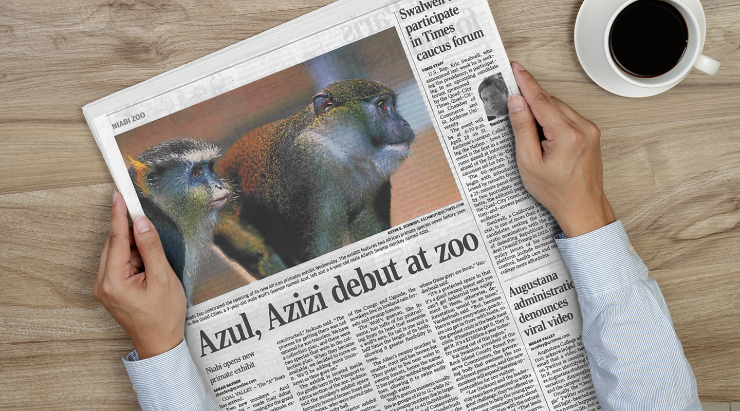 Newspaper article about Niabi primates